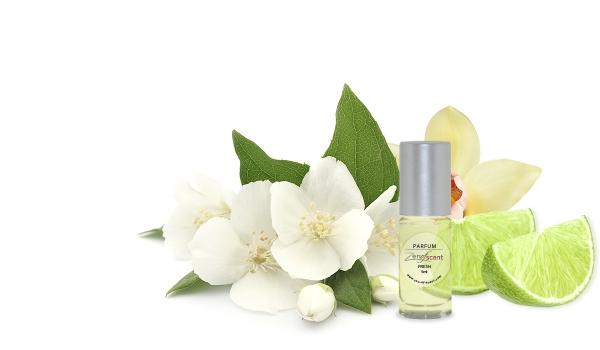 Parfum Fresh